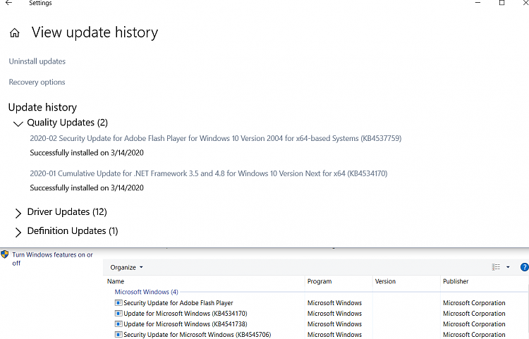 KB4541738 for Windows 10 Insider Preview Slow Build 19041.153 March 13-cpandwu.png