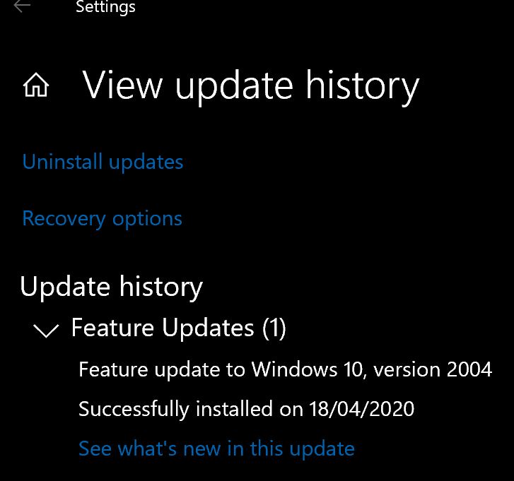 How to get the Windows 10 May 2020 Update version 2004-2004.jpg
