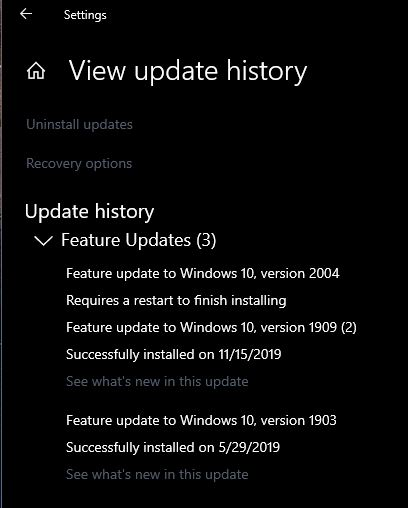 How to get the Windows 10 May 2020 Update version 2004-capture-copy.jpg