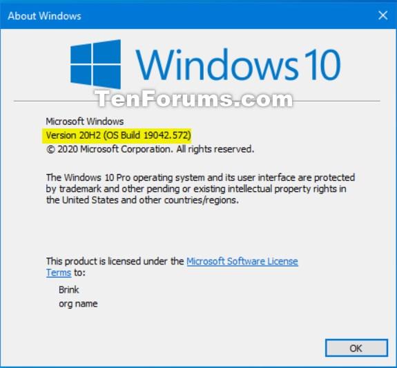 How to get the Windows 10 October 2020 Update version 20H2-19042.572.jpg