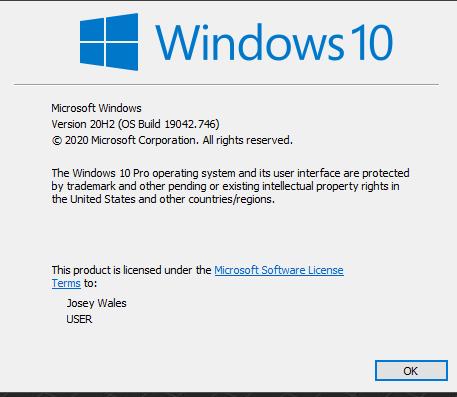 KB4598242 CU Windows 10 v2004 build 19041.746 and v20H2 19042.746-capture.png