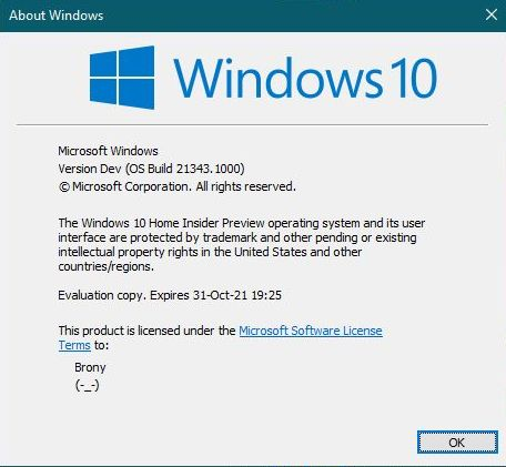 Windows 10 Insider Preview Dev Build 21343 (RS_PRERELEASE) - March 24-capture_03242021_184041.jpg