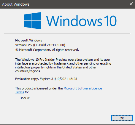 Windows 10 Insider Preview Dev Build 21343 (RS_PRERELEASE) - March 24-21343.png