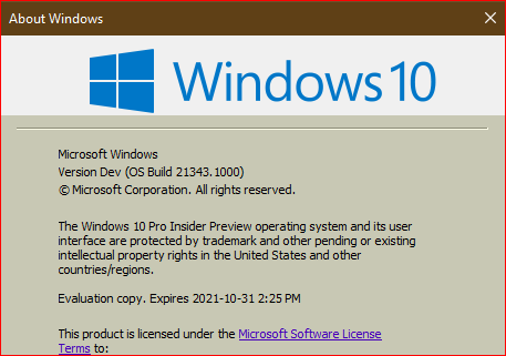 Windows 10 Insider Preview Dev Build 21343 (RS_PRERELEASE) - March 24-insider-preview-21343.1000.png