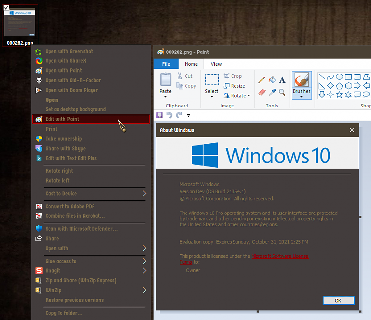 Windows 10 Insider Preview Dev Build 21354.1 (co_release) - April 7-000283.png