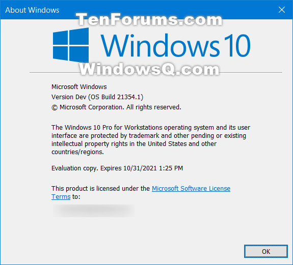 Windows 10 Insider Preview Dev Build 21354.1 (co_release) - April 7-winver.png