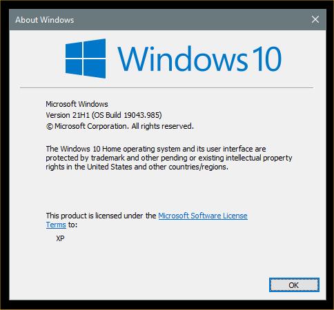 KB5003173 CU Windows 10 2004 19041.985, 20H2 19042.985, 21H1 19043.985-image1.png