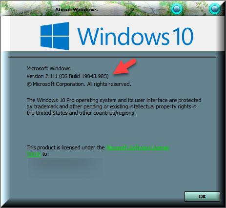 KB5003173 Windows 10 Insider Beta 19043.985 21H1 and RP 19042.985 20H2-winver-after-installing-kb5003173.png