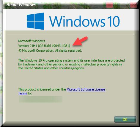 KB5003690 Windows 10 2004 19041.1081, 20H2 19042.1081, 21H1 19043.1081-winver-after-installing-kb5003690-asus.png