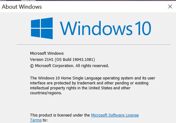 KB5003690 Windows 10 2004 19041.1081, 20H2 19042.1081, 21H1 19043.1081-winver-22-june-2021.png