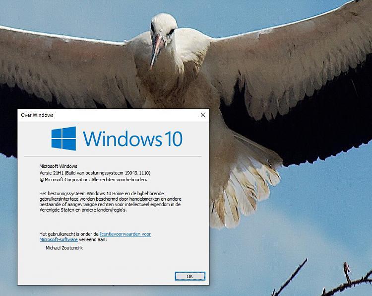 KB5004237 Windows 10 2004 19041.1110, 20H2 19042.1110, 21H1 19043.1110-untitled-1.jpg