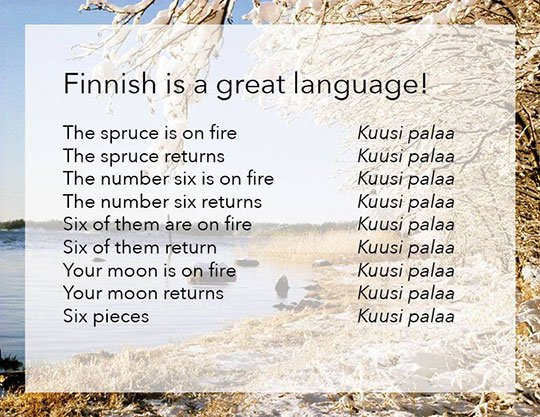 Click image for larger version.  Name:Finnish_d98c45_5527478.jpg Views:38 Size:88.2 KB ID:40863