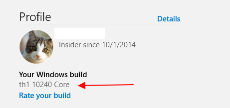 Announcing Windows 10 Insider Preview Build 10586 for PC-your-windows-build.jpg