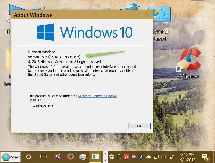 Cumulative Update KB3176938 Windows 10 build 14393.105-2016-09-01_05h16_20.png