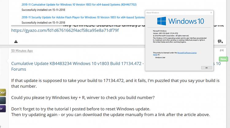 Windows update error 0x8007000d for KB4483234-winver.png