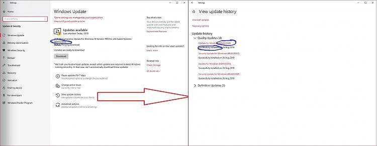 Windows 10 updates offers already installed updates (via