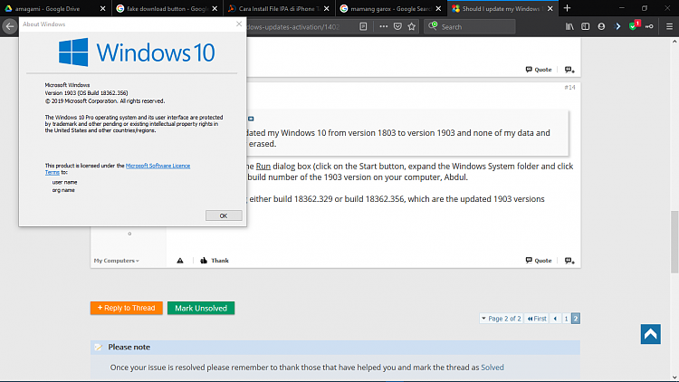 Should I update my Windows 10 version into Windows 10 version 1903?-winver.png