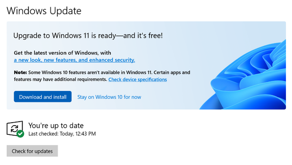 Is There A Danger That Windows 10 Will Automatically Update To 11?-image.png