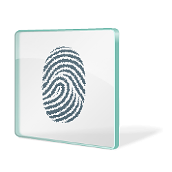 Enable or Disable Users to Sign in to Windows 10 using Biometrics